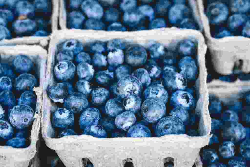 فوائد العنب البري